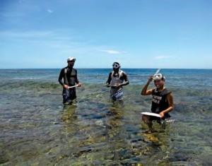 In the field Workshop Solomon Islands
