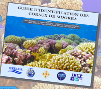 New Identification Guide to Corals of Moorea
