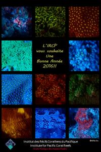 IRCPfr