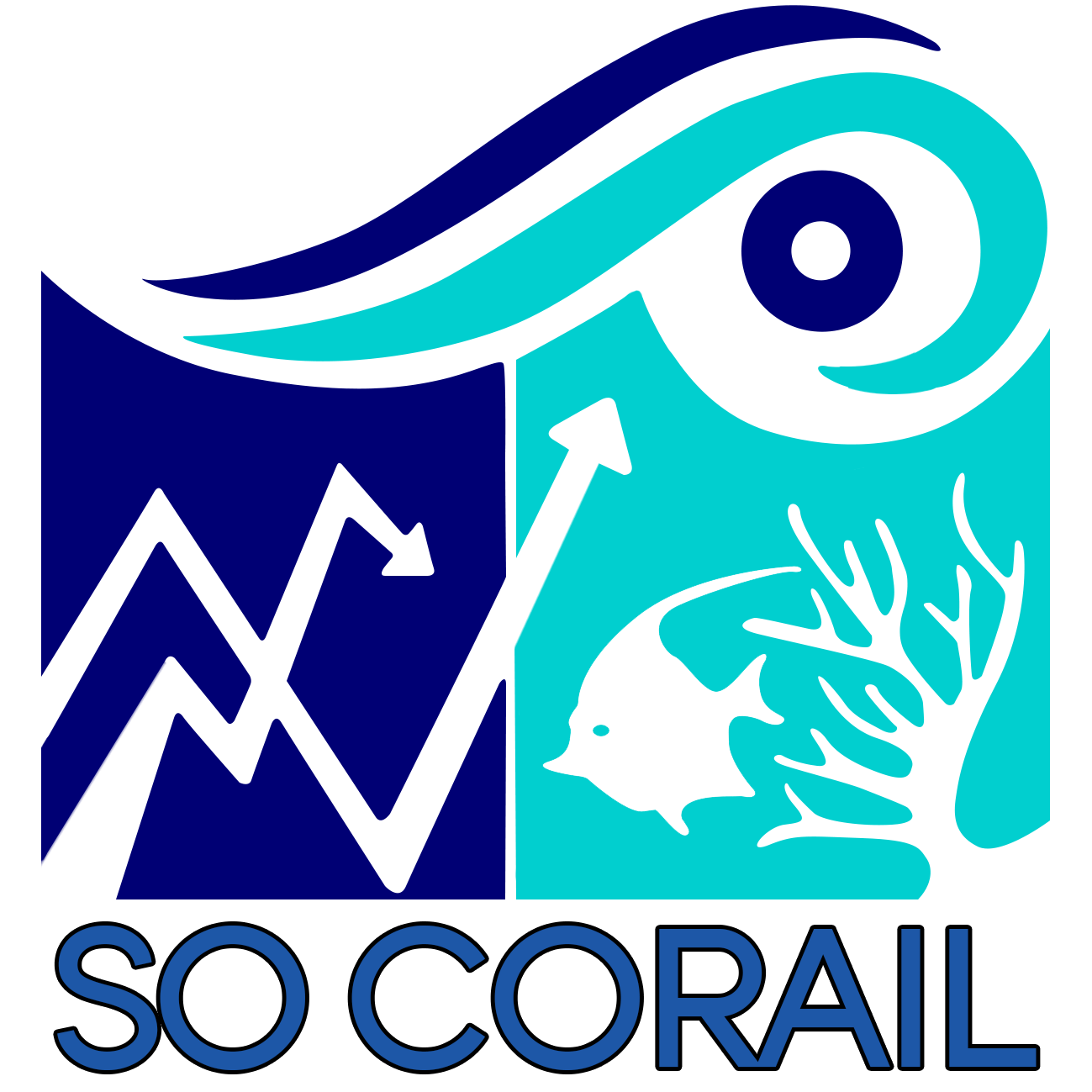 SO CORAIL