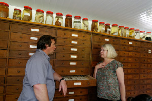 Visite des collections du CRIOBE